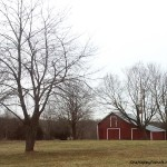 25 Jan2013 - Landscape